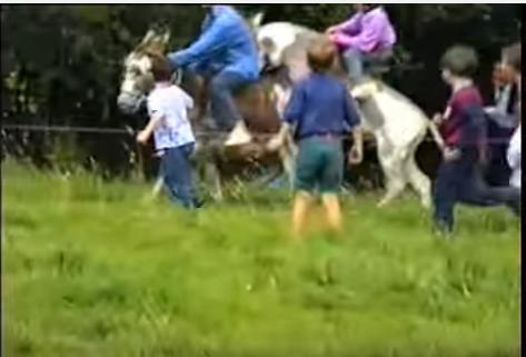 castletown donkey derby