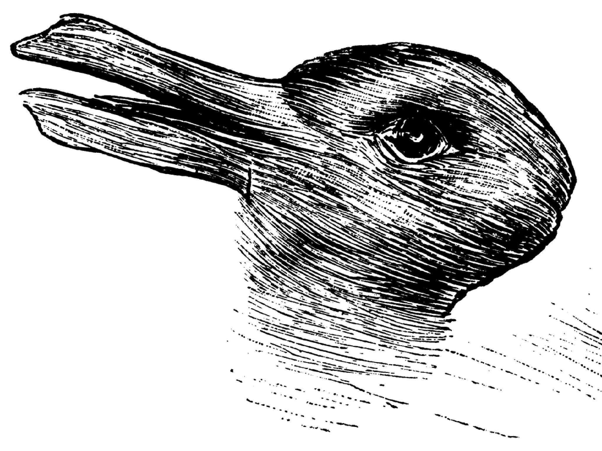 [Obrazek: Rabbit.png]
