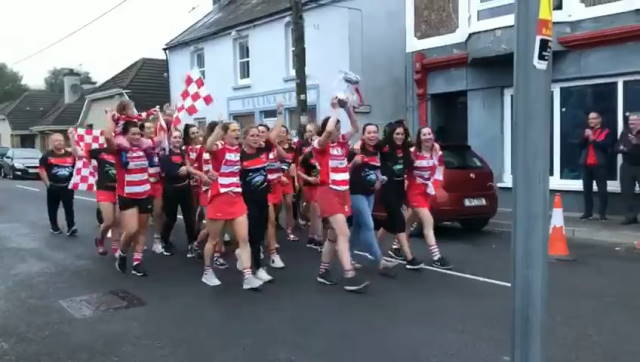 courcey rovers cork camogie champions 2020