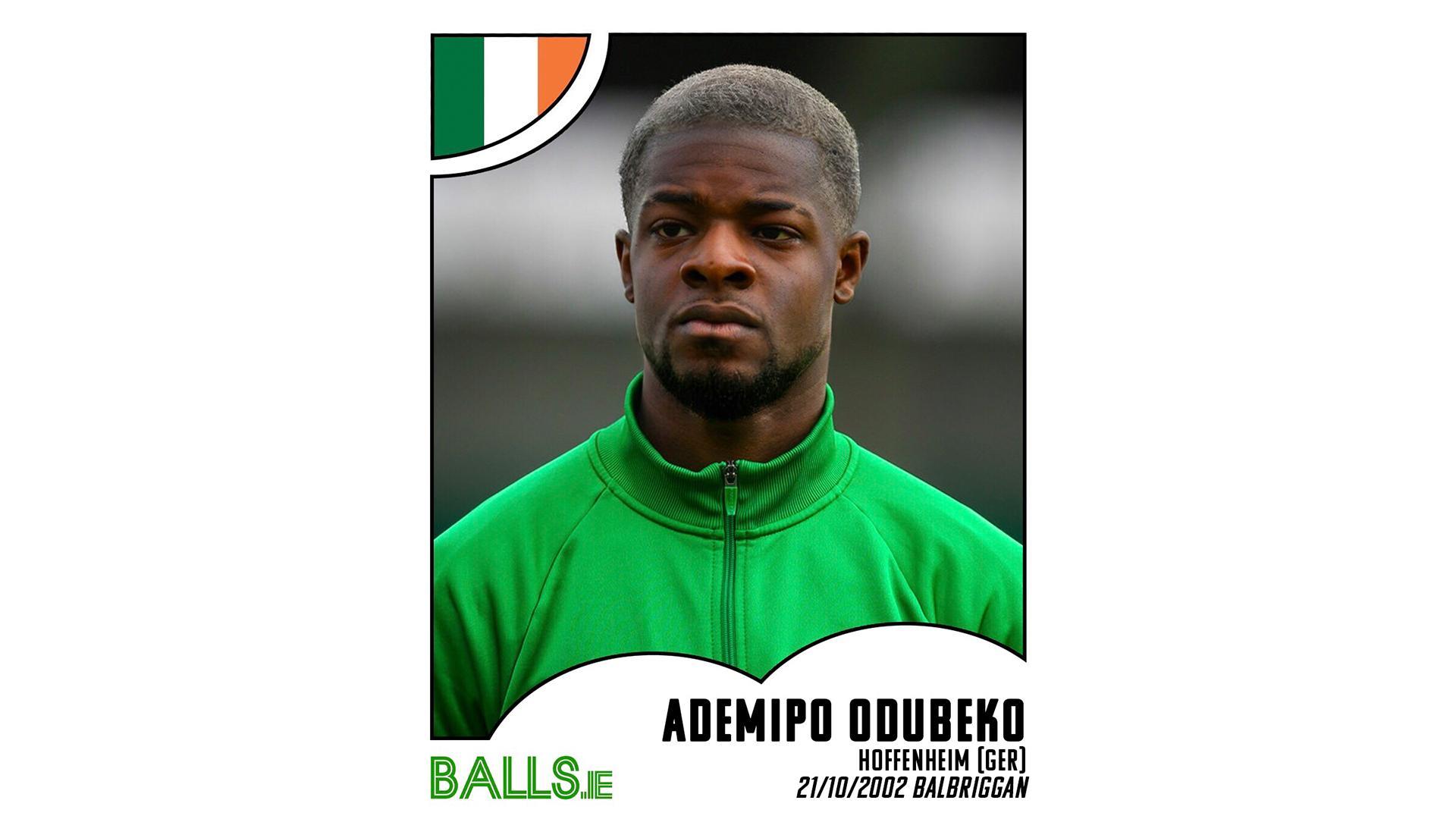 Ademipo Odubeko 2030