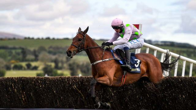 Punchestown Tips
